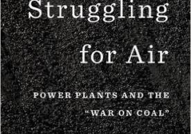 Book Cover: Struggling for Air